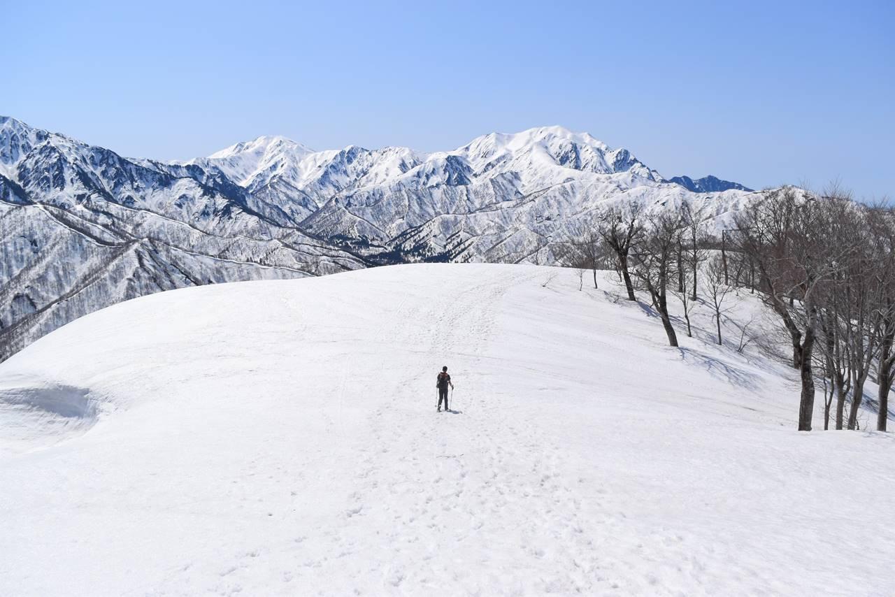 日向倉山稜線から越後三山の展望