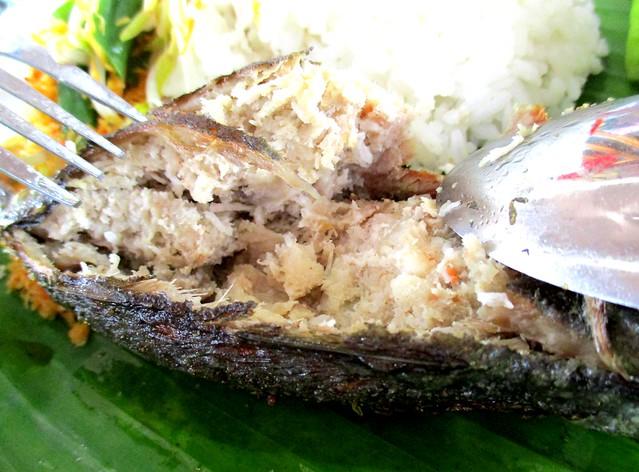 Ikan sumbat, dissected