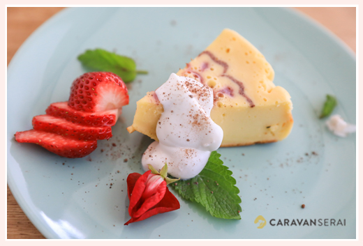 カカオカフェ(cacao cafe)/愛知県瀬戸市のチーズケーキ