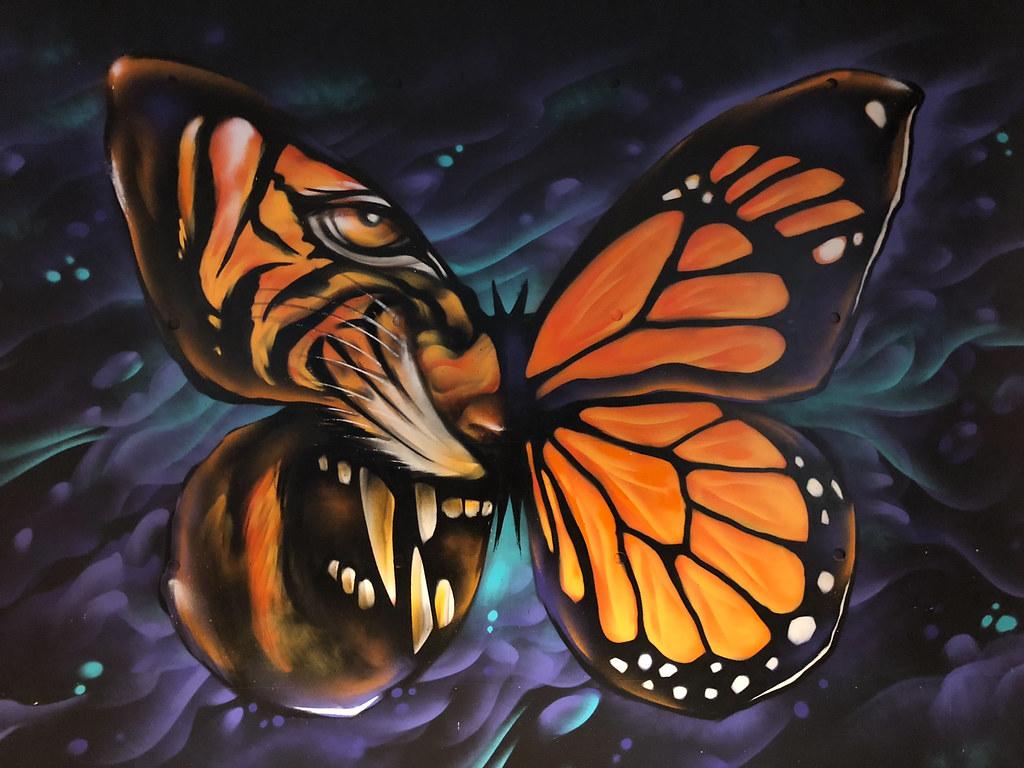 Beast-&-Butterflies