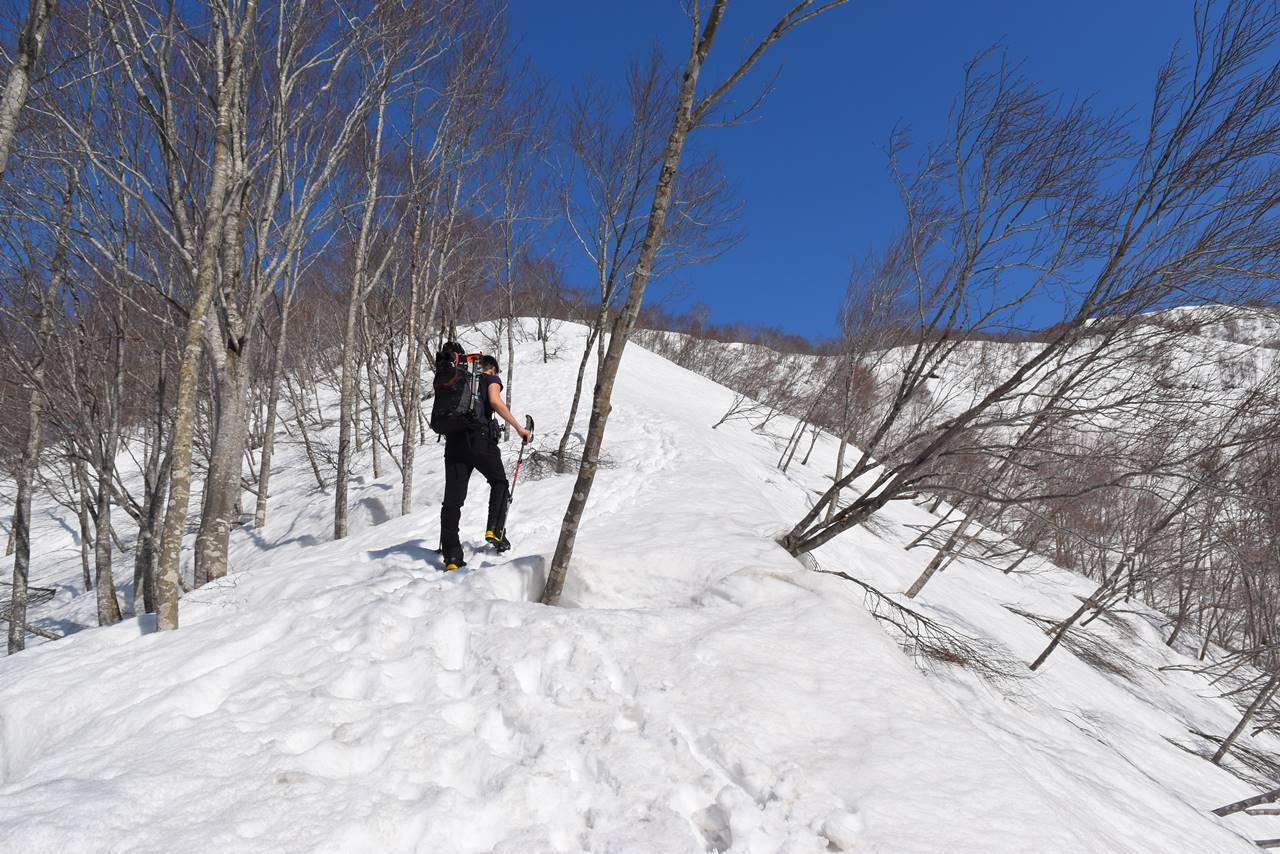 日向倉山 残雪の尾根登山道