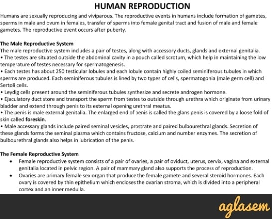 Important Notes of Biology for NEET: Human Reproduction