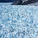 Le Conte glacier from a float plane