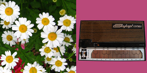 Stylophone Daisies 70s montage | by :mrMark: