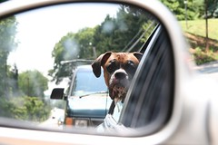 Objects In Mirror Are Closer Than They Appear | by justanotherdude