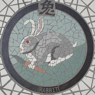 Rabbit | by mag3737