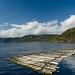 Le Saguenay à L'Anse-de-Roche