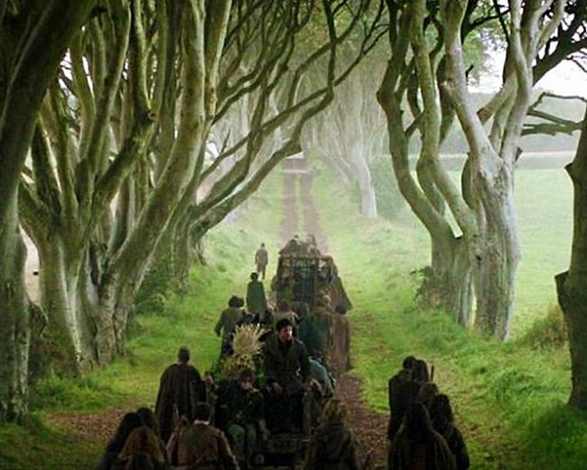 Fotograma de HBO Juego de Tronos en el bosque Dark Hedges de Irlanda
