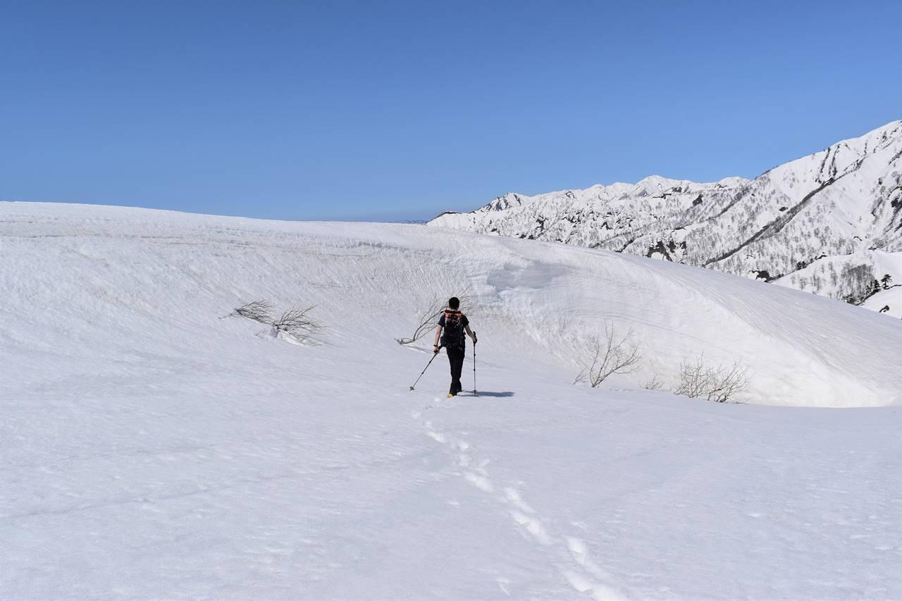 日向倉山 登山道の雪壁