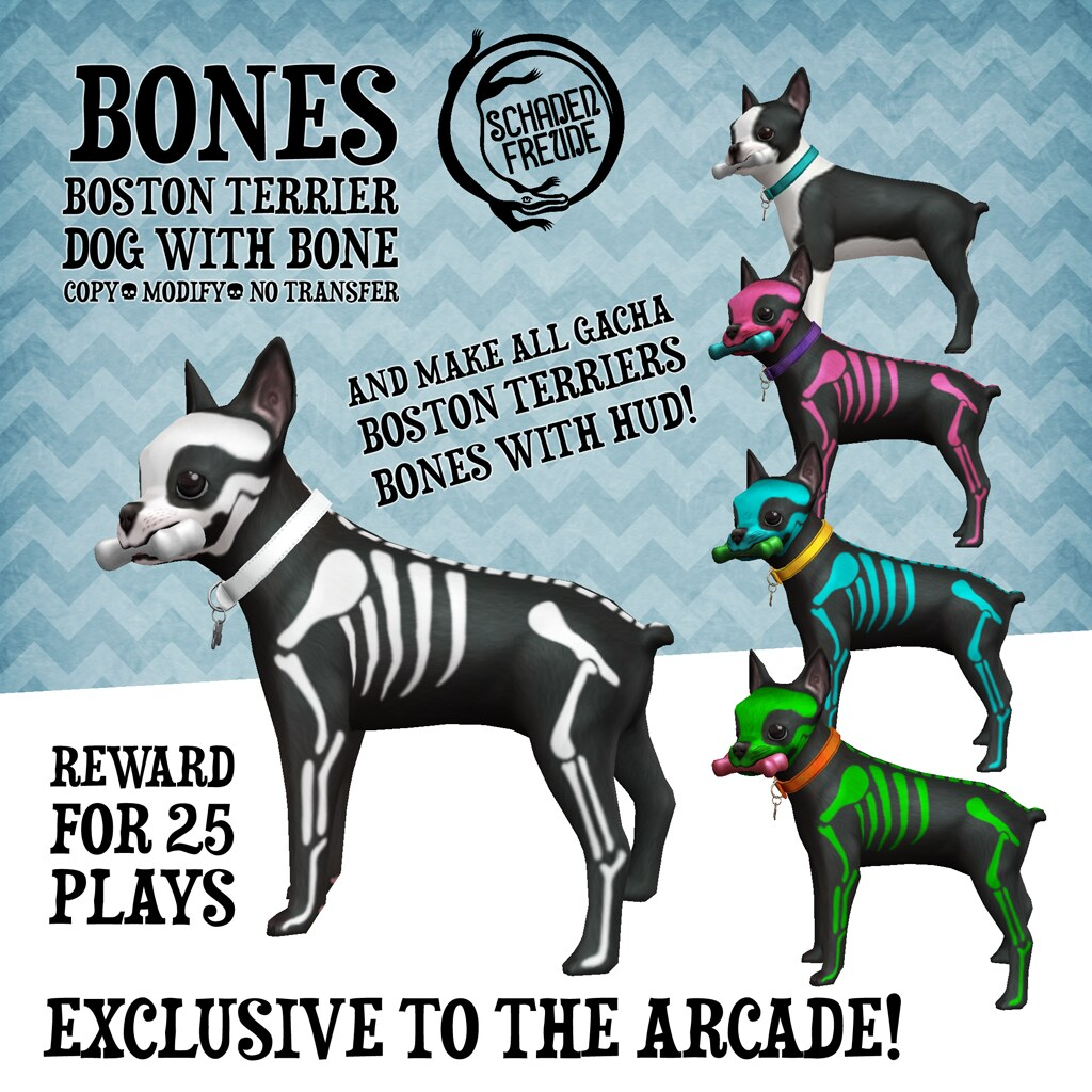 boston dog days reward | Coming June 1 to the Arcade, Boston… | Flickr