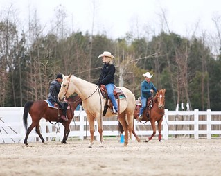 Chelsie Huseman, Equine Extension Specialist | Equus Education
