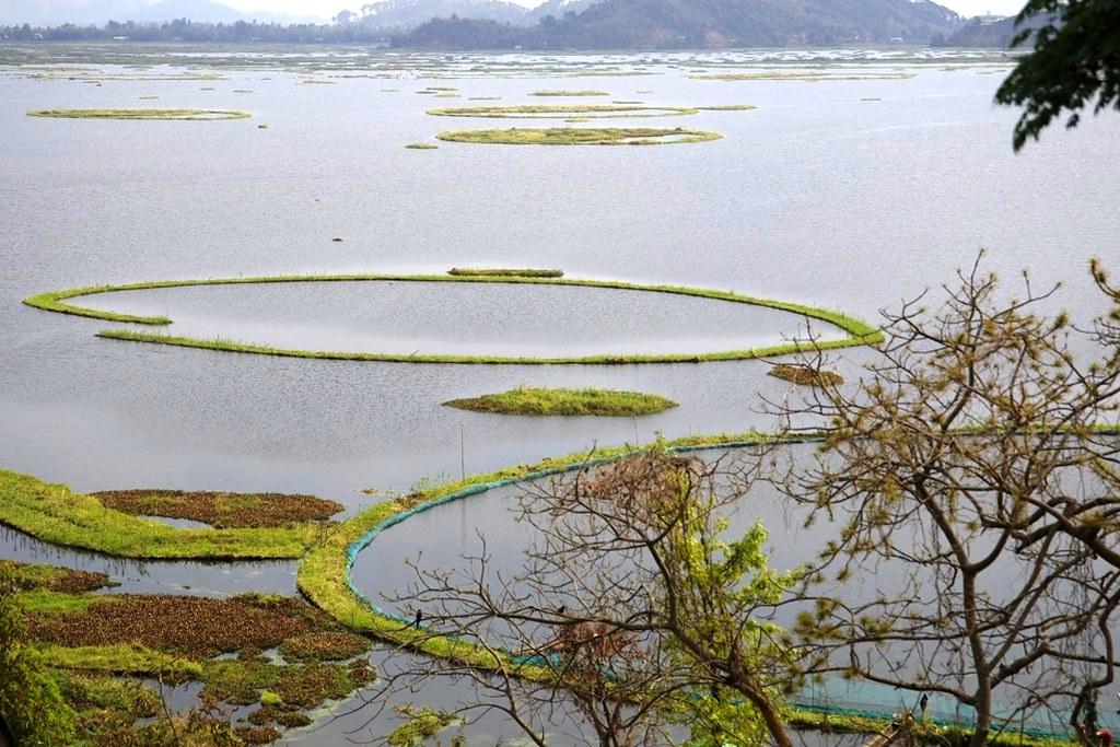 漂浮之湖─洛克塔克湖。圖片來源:Water Alternatives(CC BY-NC-SA 2.0)