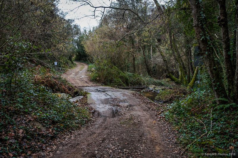 Camino de Ca n'Iscle