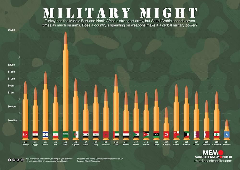 الجزائر ثالث مستورد للأسلحة والأنظمة الحربية الإيطالية عام  2013 - صفحة 4 42057572861_29c31f327f_o