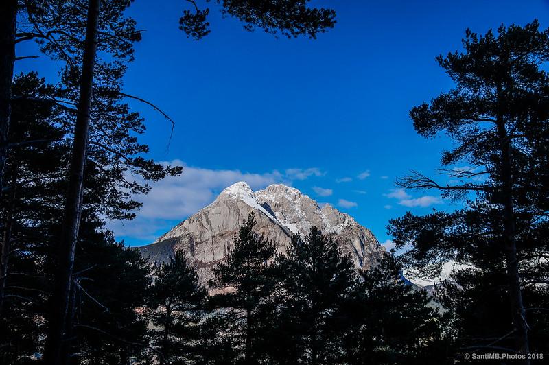 El Pedraforca desde el Bosc de Palomera