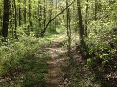 Lance Creek Road