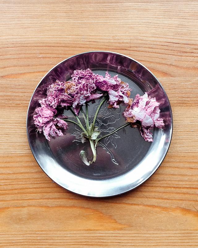 blossom on metal dish
