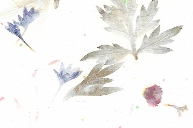 Papier mit getrockneten Pflanzenteilen aus der Papiermühle Fontaine-de-Vauclause in der Provence