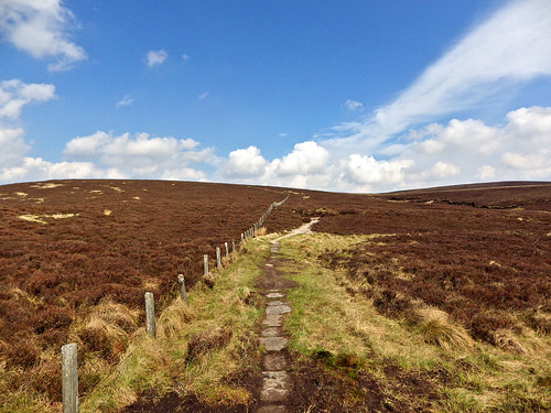 Pennine Way Border Ridge