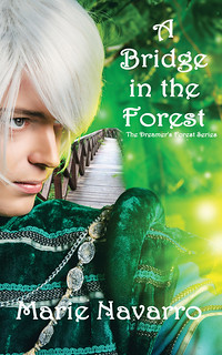 Book Cover image - A Bridge in the Forest