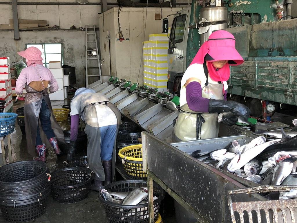 成龍村具有獨特又滿有活力的地方產業。攝影:廖靜蕙