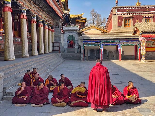 Debate de los monjes en el monasterio Kumbum (Qinghai, China)