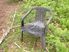 Chair I Found in the Woods