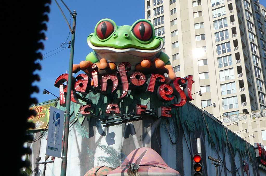 Rainforest Cafe Chicago Valet Parking