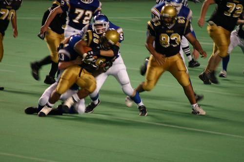 SHS Tigers | Stadium High School Tigers | Flickr
