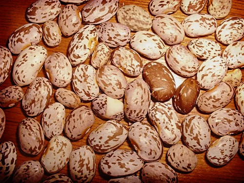 Pinto Beans | by basswulf