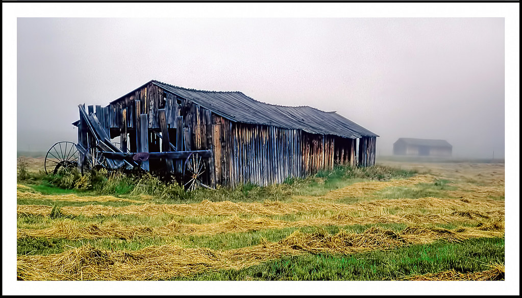 weathered barn in a foggy colorado meadow 1971 one doesn flickr