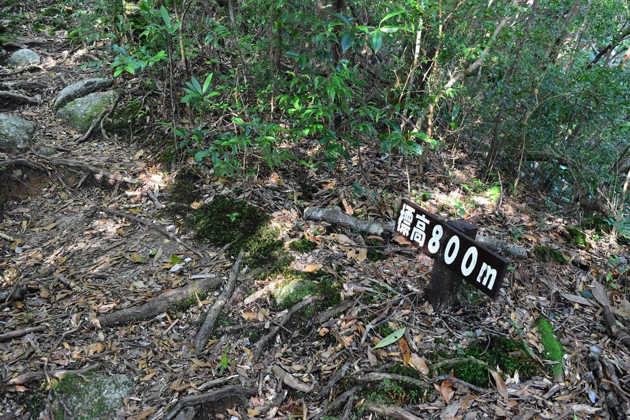 モッチョム岳・標高800m標識