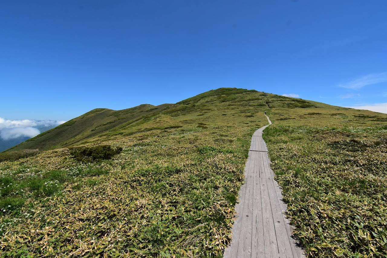 平標山から仙ノ倉山へと続く木道路
