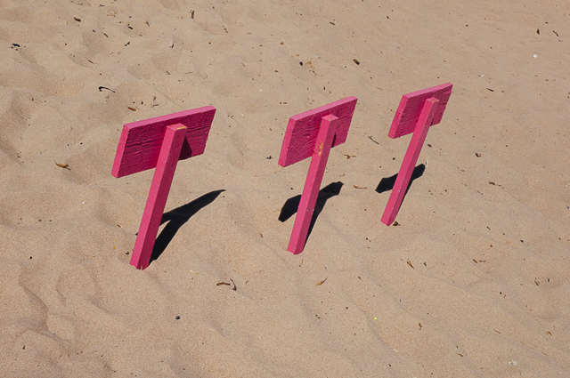 pink placards on beach