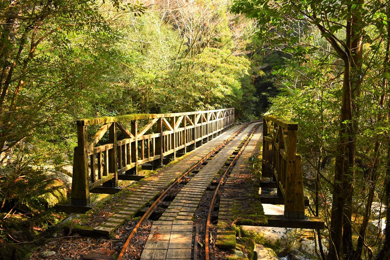 屋久島・トロッコ道の橋