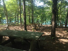 Charleston Park Trail Lower Picnic Area