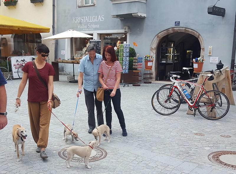 Jolanda mit Anukis und Impala, Heinz mit Balu (Peri) und Eva mit Illoy (Foxy)