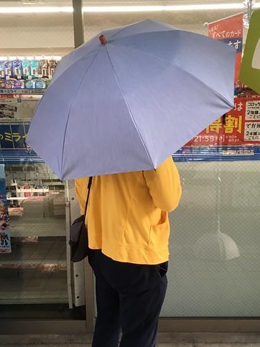 あまりの暑さに日傘を導入