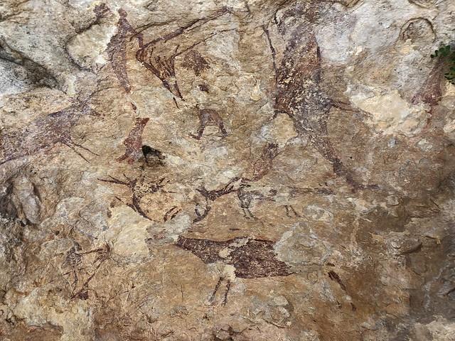 Pinturas rupestres en la Solana de las Covachas (Nerpio, Sierra del Segura)