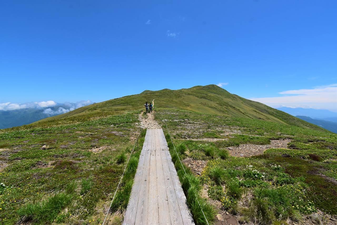 平標山~仙ノ倉山 稜線の木道