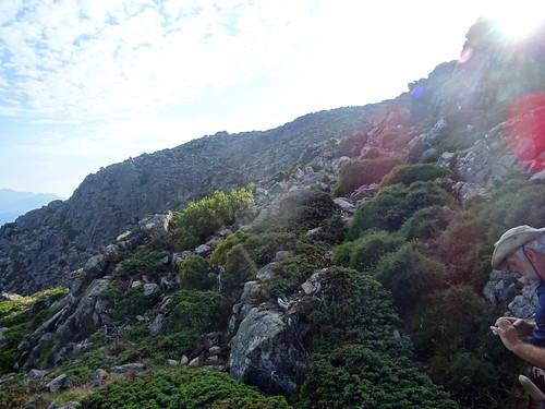 Dans la montée à Bocca di Morellu
