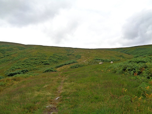 Ascending to Horse Head Moor