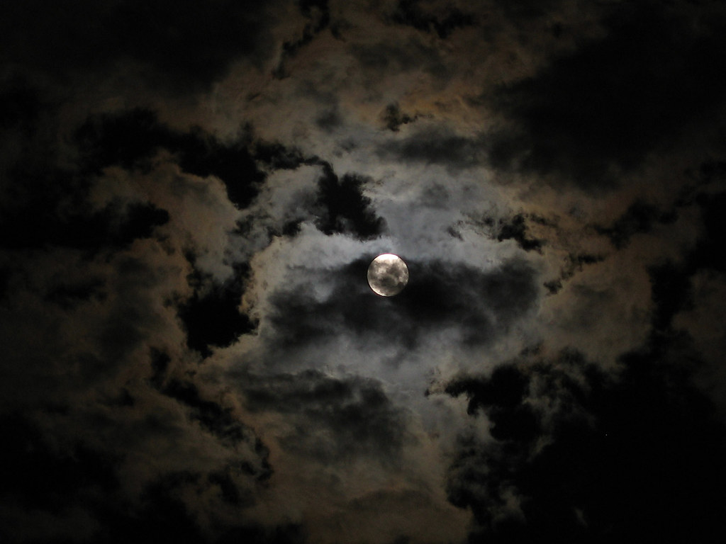Image Result For Days Of Night