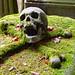 2006-08-26 Memento mori