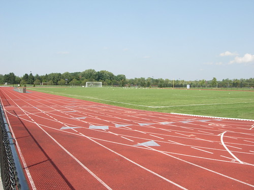Track, field, and seagulls | by thetorpedodog