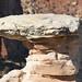 Rock Anvil