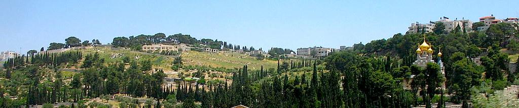 Вид на Елеонскую гору в Иерусалиме.