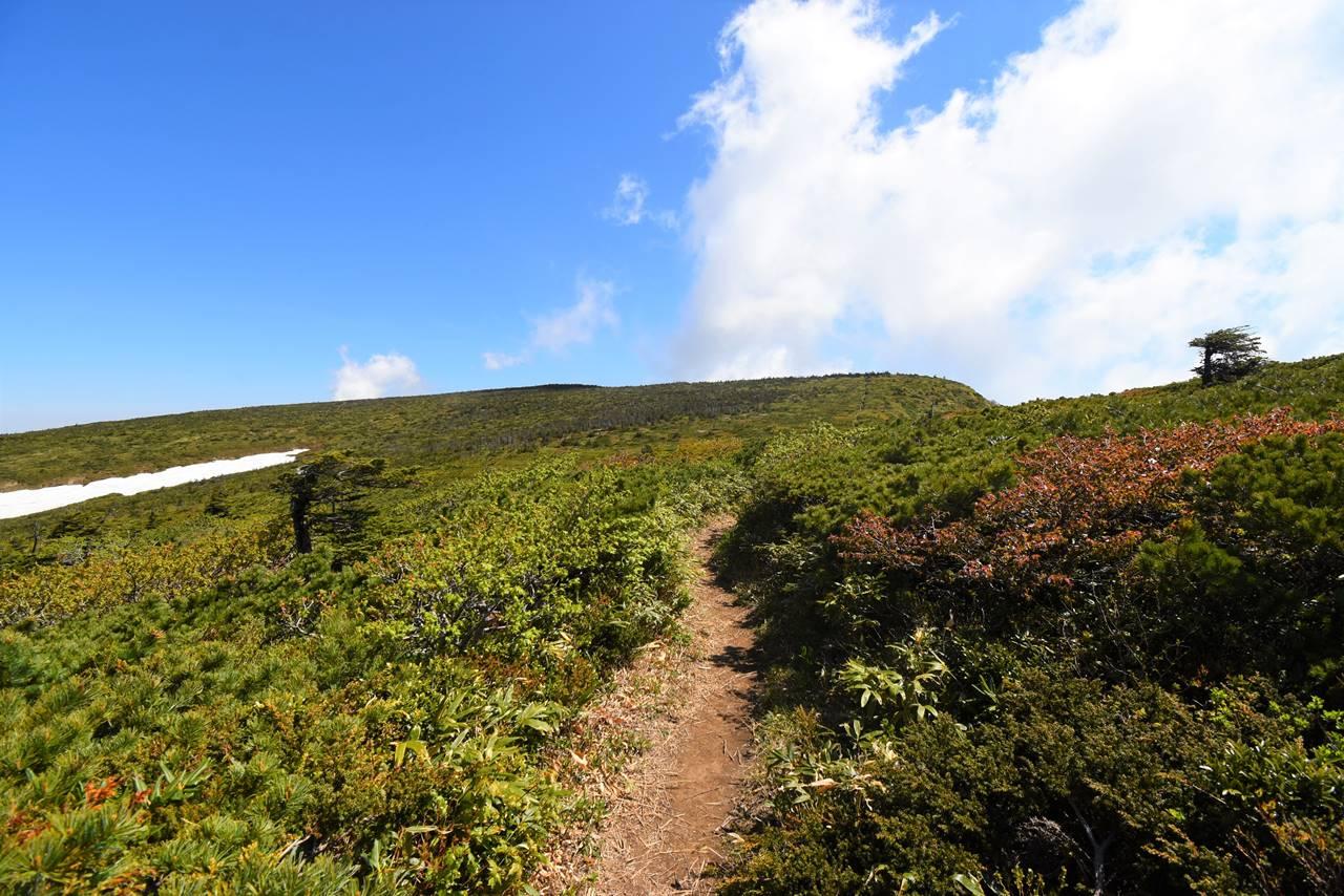 南屏風岳から屏風岳の稜線