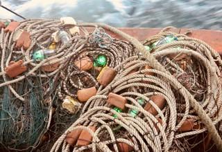 裝有LED的漁網。圖片來源:ProDelphinus