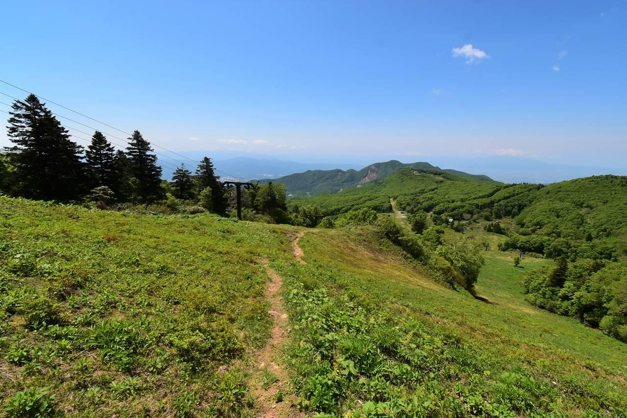 夏の蔵王スキー場 樹氷原コース登山道